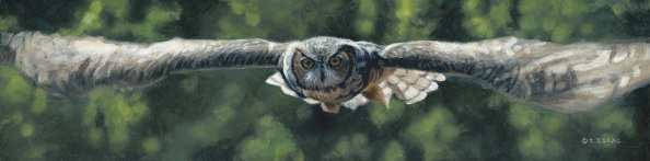 buy Silent Flight owl by Terry Isaac at Ashley's